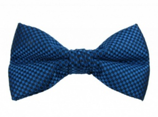 Polyester Pre-Tied Blue Bow Tie with Check Pattern